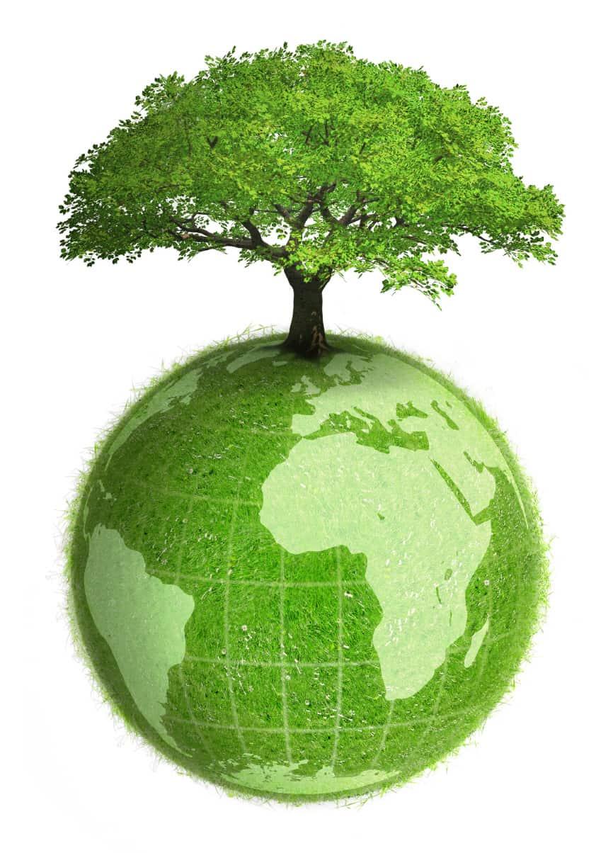 Energiesparkonzept Hunkeler Sytseme 4 Segmente in Kreis Greenline Concept