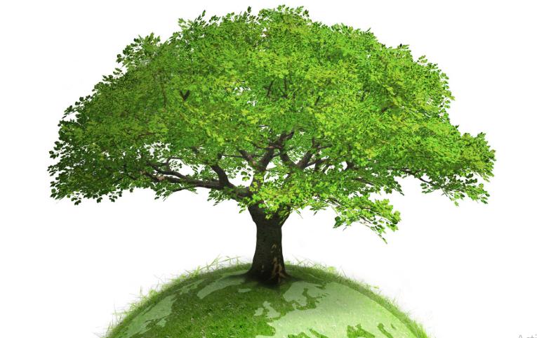Energieeffizient und sparsam: Ökologische Aspekte von Absauganlagen